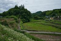 急勾配な階段の在る神社 - Mark.M.Watanabeの熊本撮影紀行