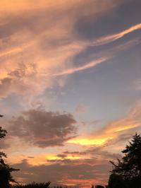 真夏の夕暮れ - ねこちんの日常
