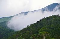夏山湧きたつ雲Ⅲ - 風の香に誘われて 風景のふぉと缶