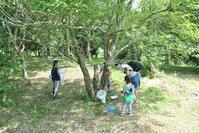 夏のスペシャルウィーク~2日目~ - 千葉県いすみ環境と文化のさとセンター