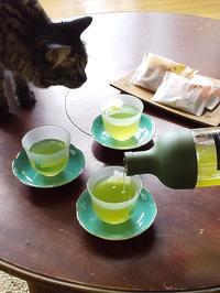 水出し緑茶にハマり中♪ - キッチンで猫と・・・