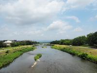 京都御苑 夏のトンボ池 一般公開 - y's 通信 ~季節を彩る風物詩~