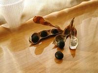 黒枝豆 2個だけ種用に - NATURALLY