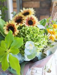 アナベルの花束 - ブランシュのはなたち