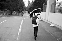 風の強い週末と風にめげないフリスビー - 照片画廊