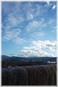 夏空と絨毯 - おだやかに たのしく Que Sera Sera