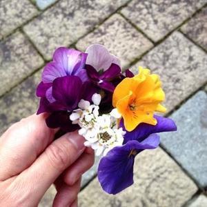 2月のトイレに花を飾る - 昭和の家とお片付け