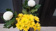 お供えの切り花と、新入り多肉&サボテン♪ - Ree's Blog