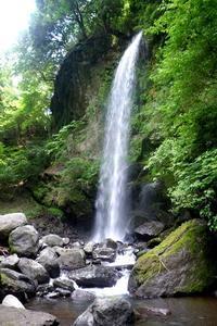 涼を求めて(3)ミヤマカワトンボ 編 - 野山の住認たち Ⅲ
