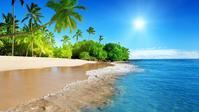 海灘上你想要的一切 - 海灘旅遊