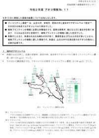 【アオコ情報(No.11) - ぴゅあちゃんの部屋