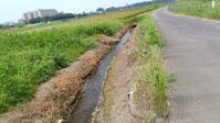 用水路の流れ - 散策で発見、自分の街のいいところ