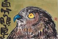 ワシミミズク・自分の眼で - 北川ふぅふぅの「赤鬼と青鬼のダンゴ」~絵てがみのある暮らし~