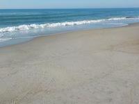海も広い方が伸び伸びする~! - @猫にコンバンワ!