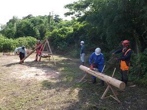 採蜜と林業 -