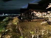 8月17日   「清水寺建立の日」 - 煎茶道方円流~東京東支部~