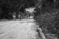想い出はモノクローム - 沖縄 Part.40 - - 夢幻泡影