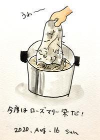 ローズマリー染 - 一天一画   Yuki Goto