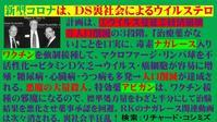 最新版「ナガレース入りワクチン」フライヤーです! - 蒼莱ブログ
