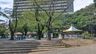 連休中の過ごし方 - ウンノ接骨院(ウンノ整体)と静岡の夜