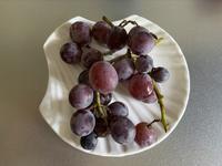 葡萄ピオーネの収穫とインド菩提樹のこと… - いととはり