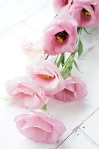 一輪のお花でも… - お花に囲まれて
