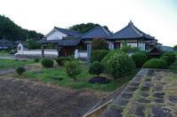 明日香村川原川原寺サルスベリ - ぶらり記録 2:奈良・大阪・・・