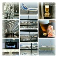 2020年8月北海道旅行~お久しぶりな羽田空港~♪ - コグマの気持ち