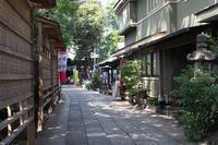 戸越八幡神社で涼む - 写真の記憶