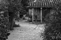 想い出はモノクローム - 沖縄 Part.41 - - 夢幻泡影