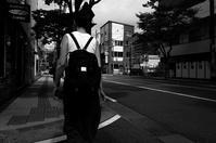 けやき通り20200812 - Yoshi-A の写真の楽しみ