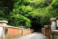 夏の神戸・布引ハイキング~布引の滝~神戸布引ハーブ園 - 司法書士 行政書士の青空さんぽ
