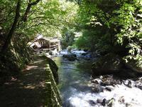 『釜ヶ滝行者の滝』 - 自然風の自然風だより