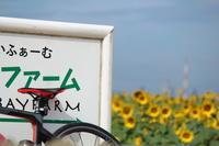 向日葵と自転車 - 猪こっと猛進
