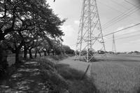 モノクロ景色。 - FUTU no PHOTO