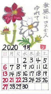 ほほえみ2020年8月「秋風にコスモスゆれて」 - ムッチャンの絵手紙日記