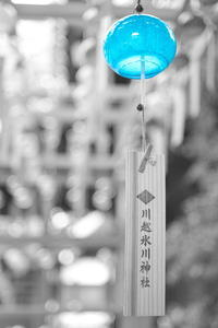 light blue - Today's one photograph