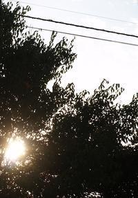 腹が立つ - hibariの巣