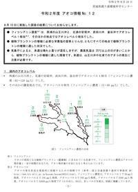 【アオコ情報(No.12)】 - ぴゅあちゃんの部屋