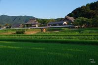 明日香村橘 - ぶらり記録 2:奈良・大阪・・・