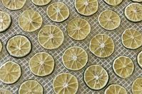 すだち - 食品乾燥機・木原製作所ブログ