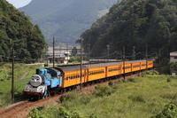 窓全開~- 2020年夏トーマス・大井川鉄道 - - ねこの撮った汽車