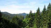 初秋の尾瀬沼(1) - 山歩風景