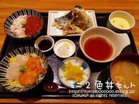 魚河岸 甚平『ミニ2色丼セット』 - yuko's happy days