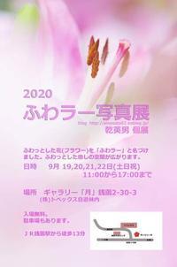 年に一度の「ふわラー祭り」ふわラー2020 - ainosatoブログ02