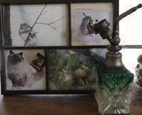 とうとう第4回目のガラス、氷リレー - 青山ぱせり日記