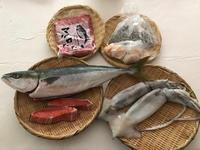 8月の魚のお取り寄せ♪烏賊・帆立・釜揚げしらす・海鮮三色丼♪ - やせっぽちソプラノのキッチン2