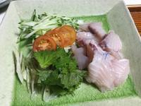 サワラの刺身としお焼き とナスの辛子漬け - ギャラリーとーちきの夢布布日記