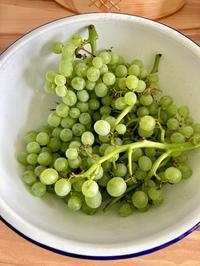お庭のブドウ&かわいいガーリックポット☆ - ドイツより、素敵なものに囲まれて②