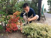 庭木に肥料を - 創造の加子母(かしも)っ子タイム